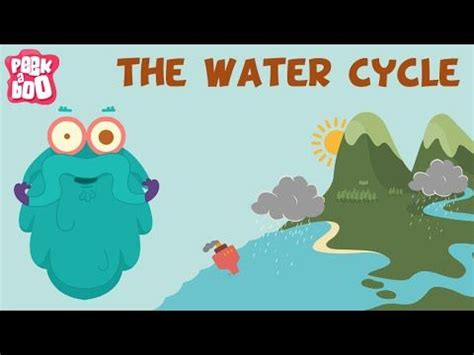 Water Cycle Essay Example Graduateway